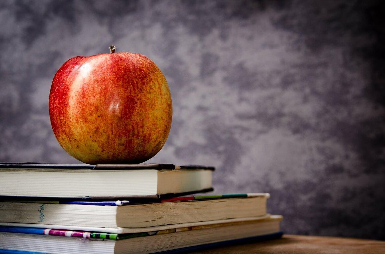 Kosten für Schulverpflegung nicht steuerlich begünstigt